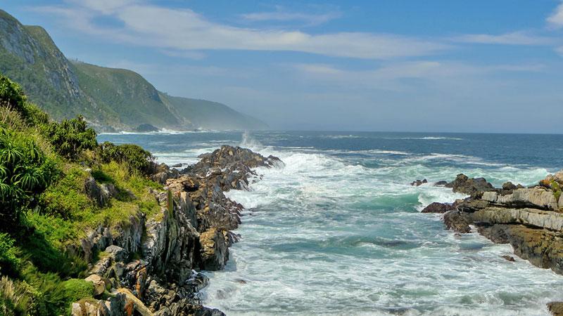 Potovanje Južna Afrika, Garden Route, narodni park Tsitsikama