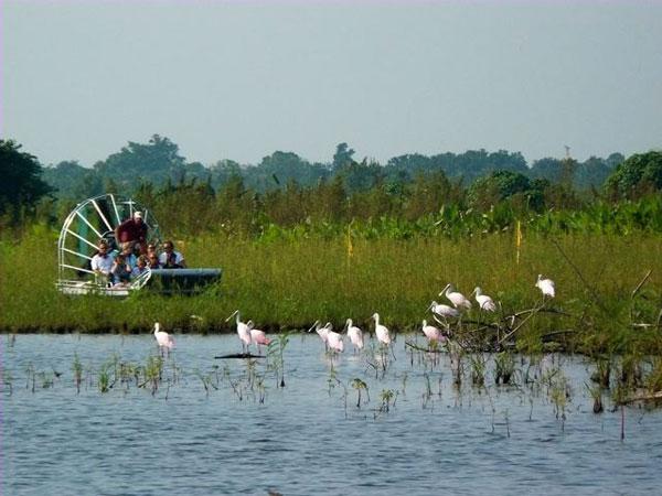 SAD putovanje, Sunčana i zabavna Florida, Nacionalni park Everglades