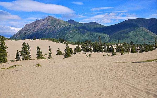 Potovanje ZDA, Aljaska, Carcross Desert
