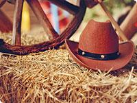 SAD putovanje, Putovi kauboja